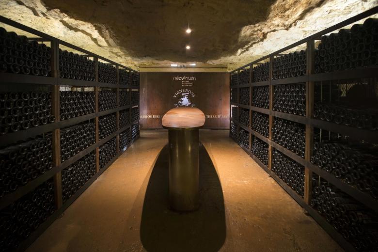 vinotheque_degustation_oenologique_visite_vignerons_ardechois_aven_orgnac_credits_jf-arnaud.jpg